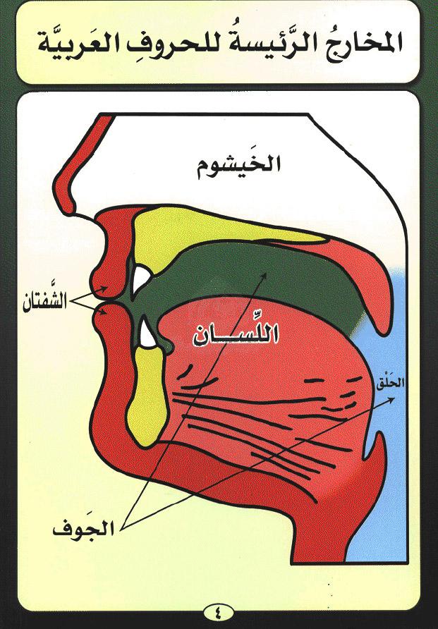online Ближний Восток.
